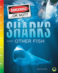 Dangerous...or Not?: Sharks and Other Fish