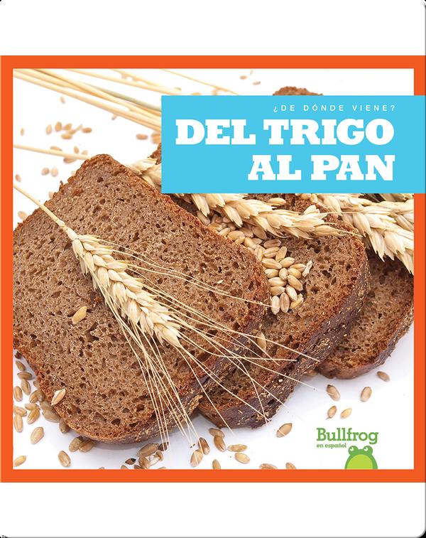 Del trigo al pan (From Wheat to Bread)