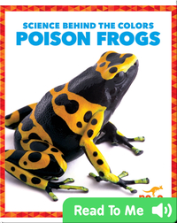 Science Behind the Colors: Poison Frogs