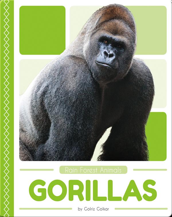 Rain Forest Animals: Gorillas