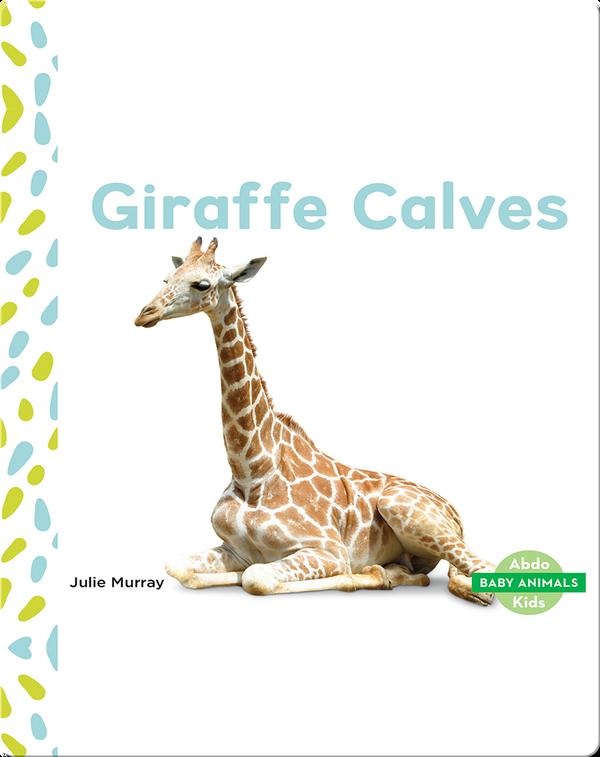 Baby Animals: Giraffe Calves