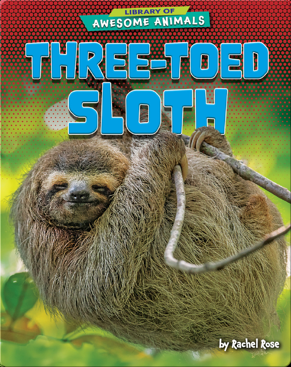 Awesome Animals: Three-Toed Sloth