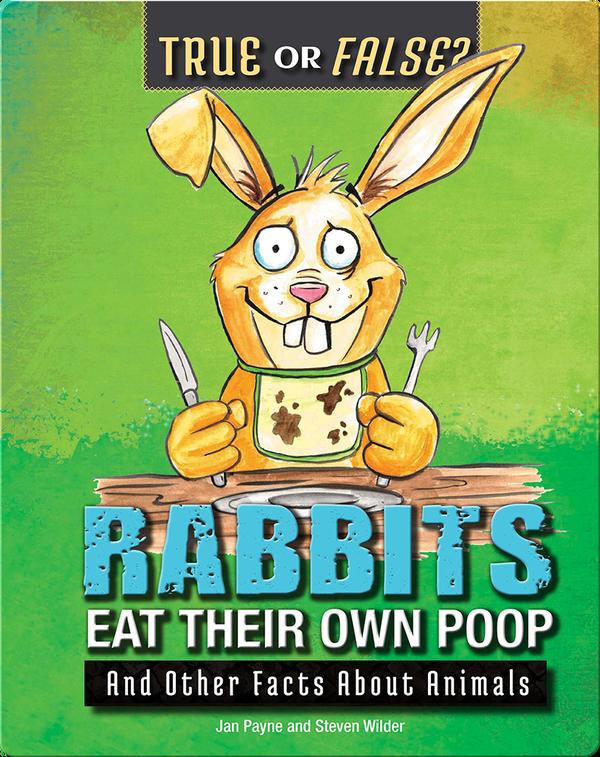 Rabbits Eat Their Own Poop