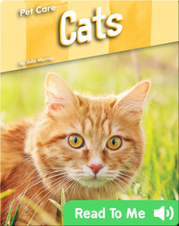 Pet Care: Cats