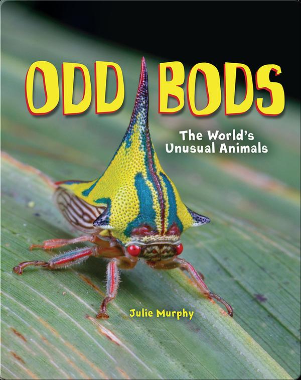 Odd Bods: The World's Unusual Animals