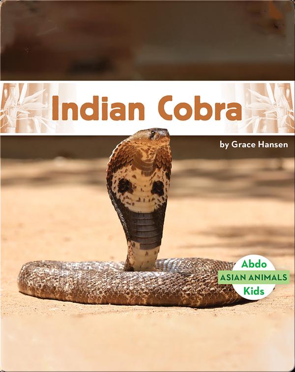 Asian Animals: Indian Cobra