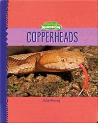 Animal Kingdom: Copperheads