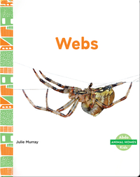 Animal Homes: Webs