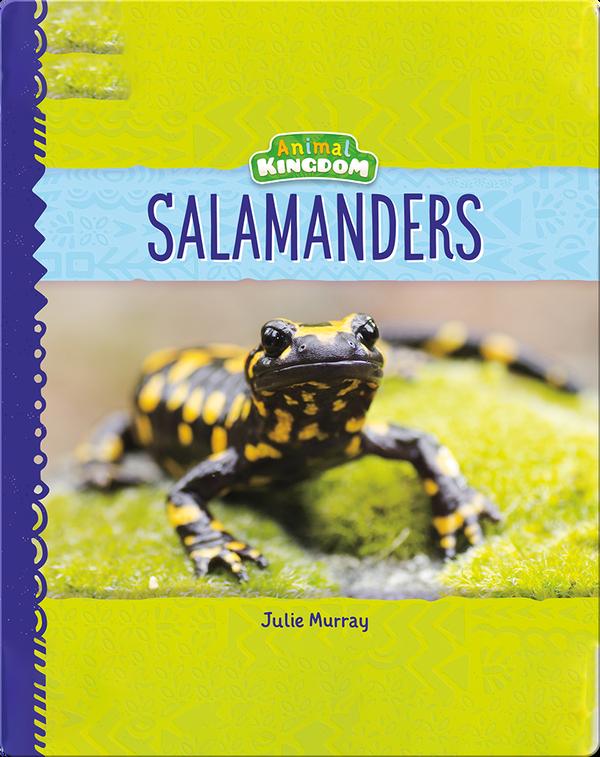 Animal Kingdom: Salamanders