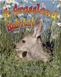 A Grassland Habitat