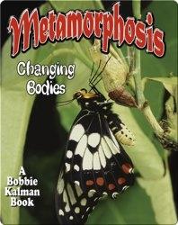Metamorphosis: Changing Bodies