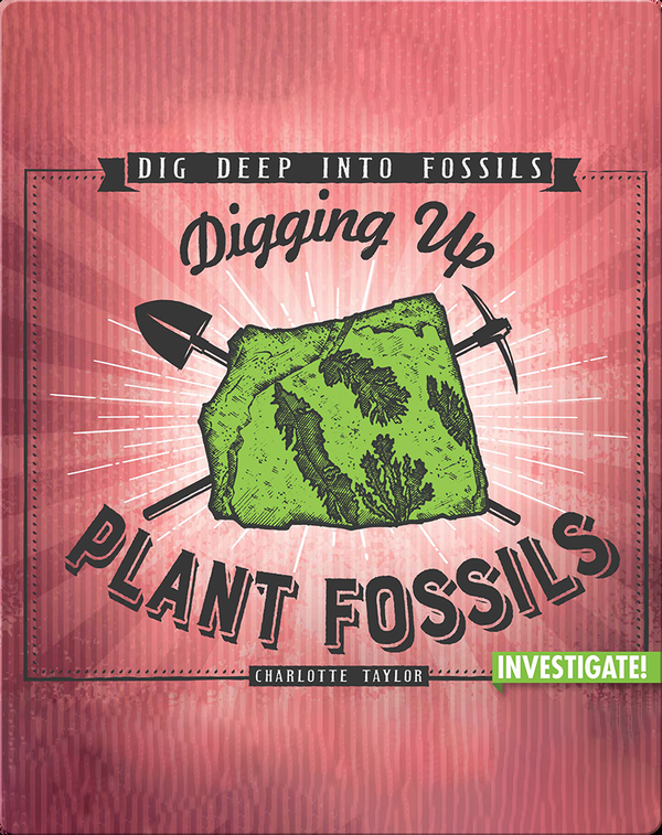 Digging Up Plant Fossils