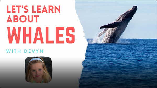 Adventure Family Journal: Let's Learn About Whales
