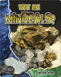 What Are Minerals? (Let's Rock!)