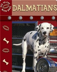 Eye To Eye With Dogs: Dalmatians
