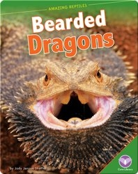 Amazing Reptiles: Bearded Dragons