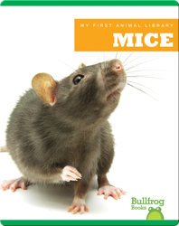 My First Animal Library: Mice