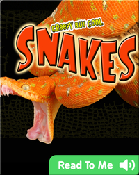 Creepy But Cool: Snakes