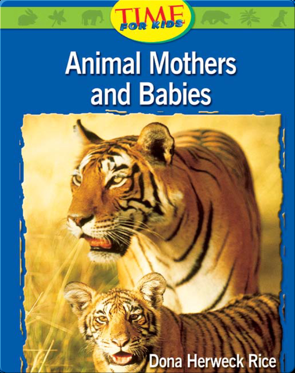 Animals Mothers and Babies