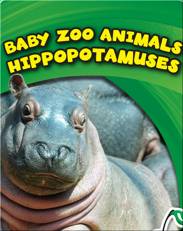 Baby Zoo Animals: Hippopotamuses