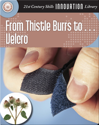 From Thistle Burrs to... Velcro