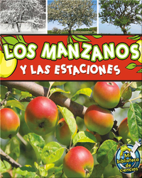 Los manzanos y las estaciones (Apple Trees and The Seasons)