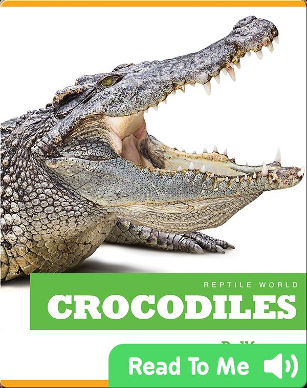 Reptile World: Crocodiles