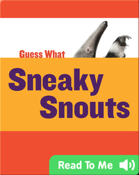 Sneaky Snouts