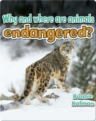 Why and where are animals endangered?