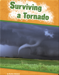 Surviving a Tornado