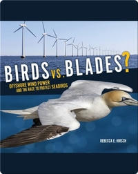 Birds vs. Blades?: Offshore Wind Power and the Race to Protect Seabirds