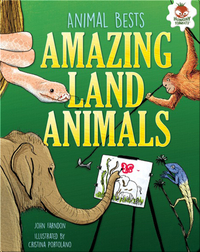 Amazing Land Animals