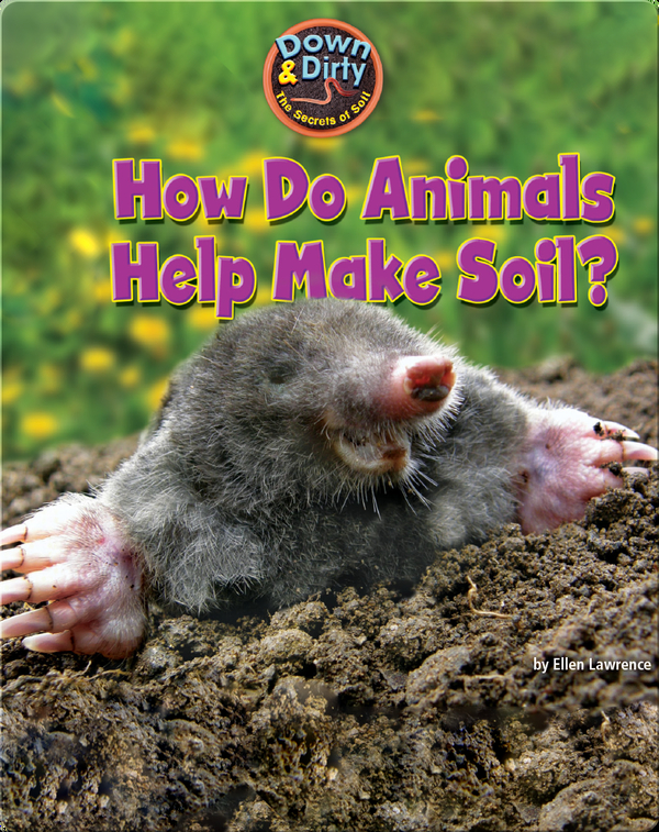 How Do Animals Help Make Soil?