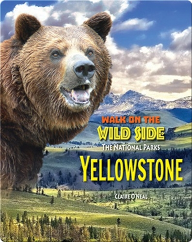 Walk on the Wild Side: Yellowstone