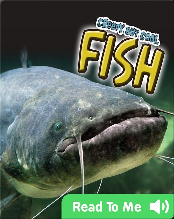 Creepy But Cool Fish