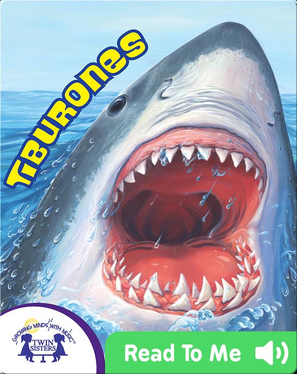 Know It Alls! Tiburones