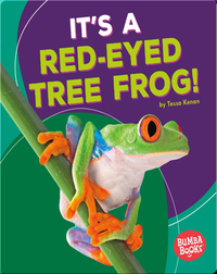 It's a Red-Eyed Tree Frog!