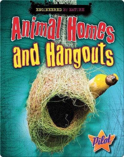 Animal Homes and Hangouts