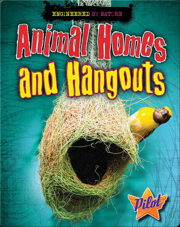 Animal Homes and Hangouts