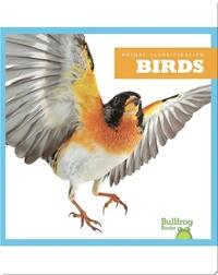 Animal Classification: Birds