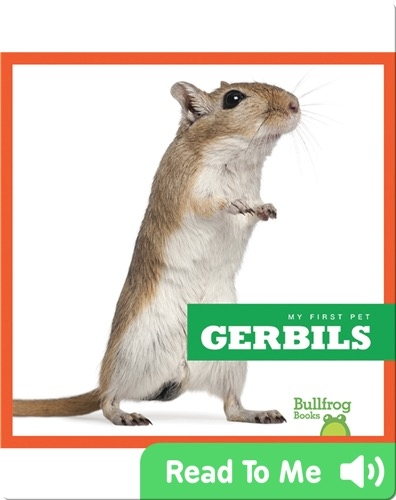 My First Pet: Gerbils