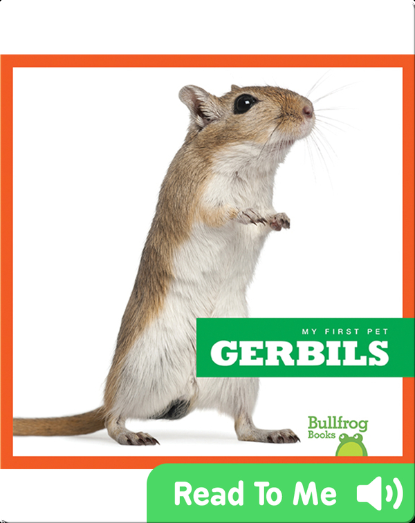 My First Pet: Gerbils