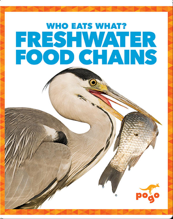 Who Eats What? Freshwater Food Chains