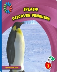 Discover Penguins