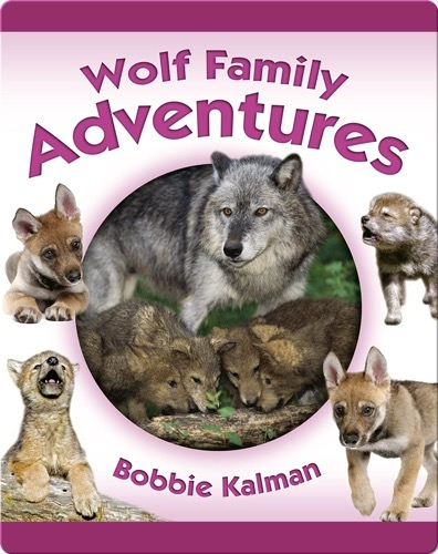 Wolf Family Adventures