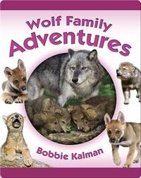 Wolf Family Adventures