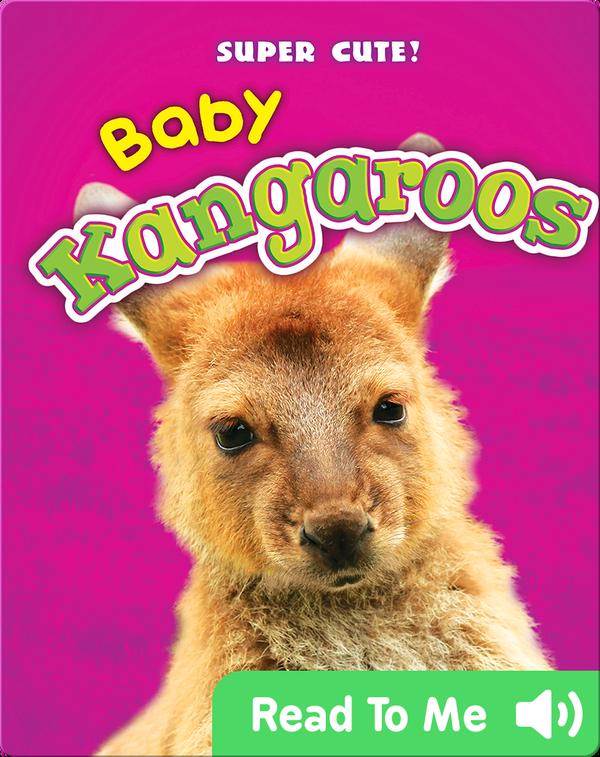 Super Cute! Baby Kangaroos