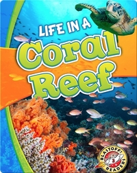 Life in a Coral Reef (Biomes Alive!)