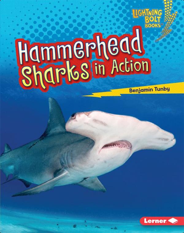 Hammerhead Sharks in Action