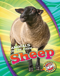 Animals on the Farm: Sheep